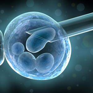 Изображение №1: Метод вспомогательной репродуктивной технологии при ЭКО - ЭКО-блог