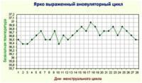 Изображение №2: Ановуляторный цикл (ановуляция) - ЭКО-блог