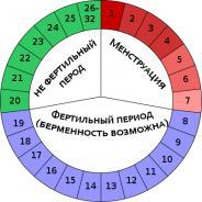 Изображение №2: Вероятность забеременеть - ЭКО-блог