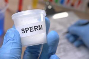 Изображение №0: Сдача (донорство) спермы - ЭКО-блог