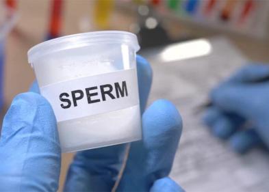 Сдача (донорство) спермы - ЭКО-блог
