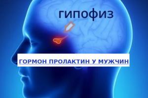 Изображение №0: Повышенный пролактин у мужчин - ЭКО-блог