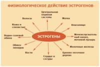 Изображение №2: Повышенный уровень эстрадиола - ЭКО-блог
