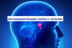 Изображение №0: Пониженный или повышенный ЛГ - ЭКО-блог