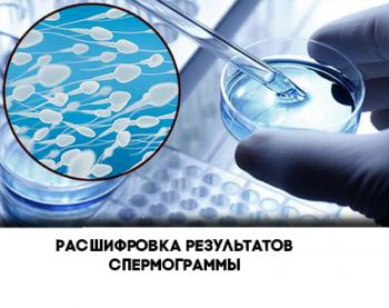 Изображение №0: Расшифровка спермограммы - ЭКО-блог