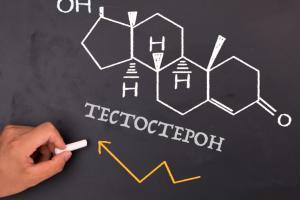 Изображение №0: Норма тестостерона у женщин - ЭКО-блог