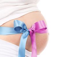 Изображение №1: Запланировать пол ребенка / Мальчик или девочка? - ЭКО-блог