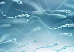 Инсеминация спермой донора - ЭКО-блог