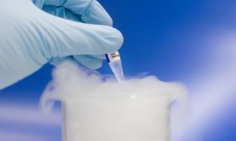 Изображение №1: Зачем делают заморозку яйцеклеток? - ЭКО-блог