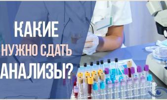 Изображение №3: Генетический анализ при планировании беременности - ЭКО-блог