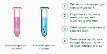 Изображение №2: Методика криоконсервации спермы - ЭКО-блог