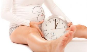 Изображение №0: Фолибер при планировании беременности - ЭКО-блог