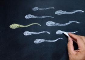 Виды мужского бесплодия - ЭКО-блог
