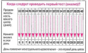 Изображение №3: Как все рассчитать и забеременеть - ЭКО-блог