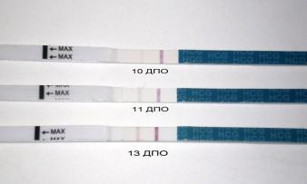 Изображение №1: Отрицательный тест при беременности - ЭКО-блог