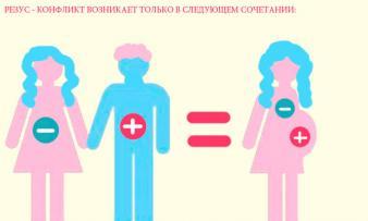 Изображение №1: Резус конфликт при беременности - ЭКО-блог