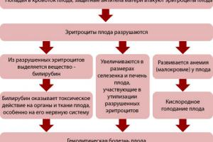 Изображение №4: Резус конфликт при беременности: таблица, последствия - ЭКО-блог