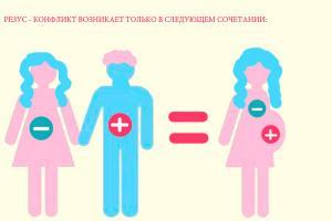 Изображение №0: Резус конфликт при беременности: таблица, последствия - ЭКО-блог