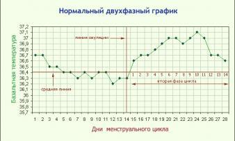 Изображение №2: Базальная температура при беременности - ЭКО-блог