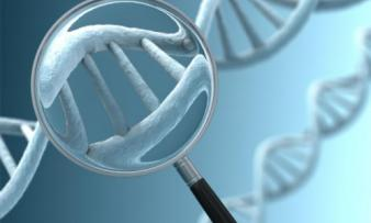 Изображение №2: Генетические заболевания, передающиеся по наследству - ЭКО-блог