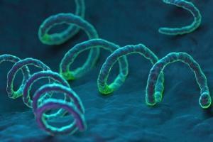 Изображение №1: Инфекции, которые мешают забеременеть - ЭКО-блог