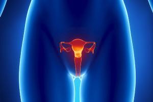 Изображение №2: Микрофлора матки влияет на успех ЭКО - ЭКО-блог