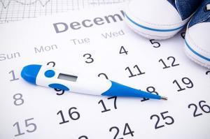 Изображение №1: Календарь зачатия - ЭКО-блог