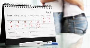 Изображение №3: Календарь зачатия - ЭКО-блог