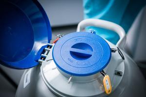 Изображение №2: Донация ооцитов и эмбрионов - ЭКО-блог