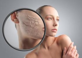 Избыток или недостаток женского гормона эстрогена – какие нормы - ЭКО-блог