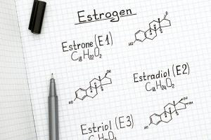Изображение №4: Избыток или недостаток женского гормона эстрогена – какие нормы - ЭКО-блог