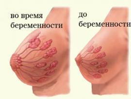 Изображение №2: Почему возникает боль в груди во время беременности - ЭКО-блог