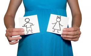 Изображение №1: Определить пол ребенка - онлайн калькулятор - ЭКО-блог