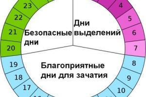 Изображение №3: Какие должны быть выделения при овуляции, до и после - ЭКО-блог