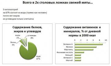 Изображение №1: Подробно о полезных и вредных свойствах мяты для организма мужчины - ЭКО-блог