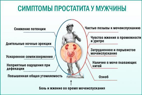 Изображение №5: Методы лечения простатита у мужчин: первые признаки, лучшие препараты - ЭКО-блог