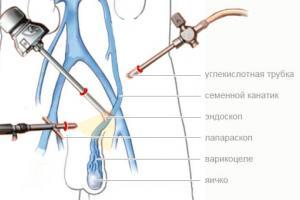 Изображение №1: Операция Мармара - ЭКО-блог