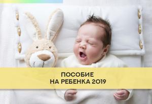 Изображение №3: Пособие при рождении ребенка в 2019 году - ЭКО-блог