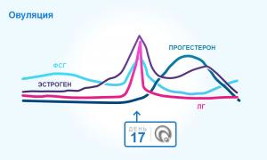 Изображение №2: Признаки, симптомы, ощущения во время овуляции - ЭКО-блог