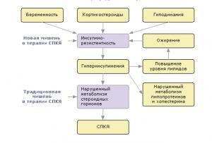 Изображение №2: Синдром поликистозных яичников (СПКЯ) - симтомы и лечение - ЭКО-блог
