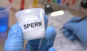 Изображение №1: Расшифровка спермограммы дома: что нужно знать мужчине - ЭКО-блог
