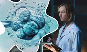 Изображение №1: Банк доноров яйцеклеток - ЭКО-блог