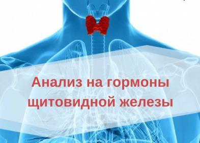Анализ крови на ТТГ что это и зачем - ЭКО-блог