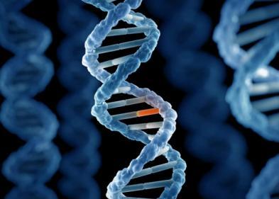 Хромосомные аномалии - ЭКО-блог