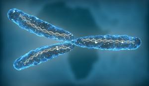 Изображение №0: Хромосомные аномалии - ЭКО-блог