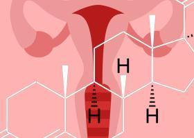 Прогестерон у женщин: норма, из-за чего меняется - ЭКО-блог