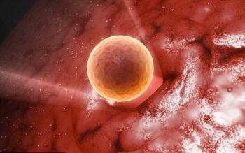 Изображение №0: 7 главных причин, из-за которых не созревает женская клетка - ЭКО-блог