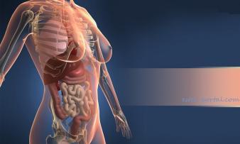 Изображение 1: Гиперпролактинемия - ЭКО-блог