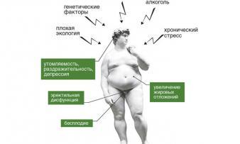 Изображение 1: Гипогонадизм - ЭКО-блог