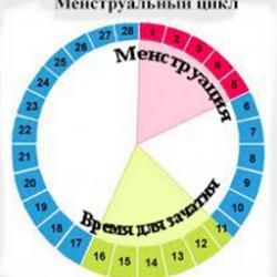 Изображение №1: Как рассчитать овуляцию? - ЭКО-блог